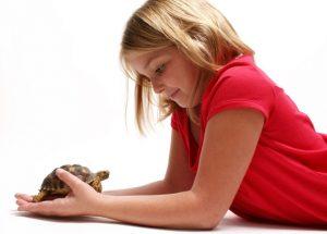 4 lecciones que las mascotas enseñas en la escuela